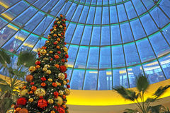 Christmas in shopping mall. Christmas tree under the snow-covered glass dome in the mall Stock Image