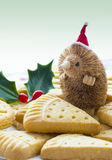 Christmas Shortbread with Santa. Stock Photo