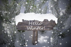 Christmas Sign Snowflakes Fir Tree Text Hello Winter Stock Photo