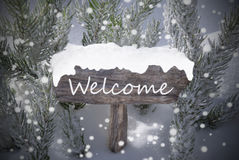 Christmas Sign Snowflakes Fir Tree Text Welcome Stock Images