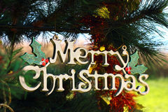 Christmas Signs hanging on the Christmas tree Royalty Free Stock Photography
