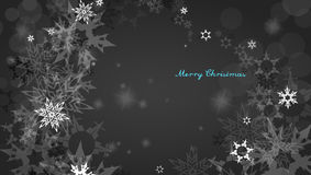 Christmas silver background with snowflakes Stock Image
