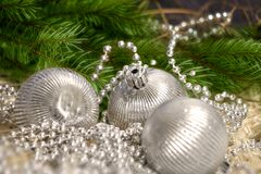 Christmas silver balls with pearls. Silver Christmas balls with silver pearl decoration and green tree branches stock image