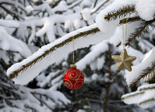 Christmas silver glass ball Royalty Free Stock Images