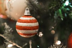 Christmas Silver red ball hanging on a beautiful Chrismas tree s. Urrounded by red and white shinning ball Stock Images