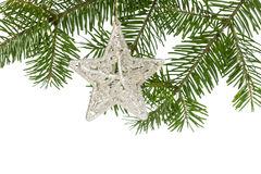 Christmas silver star on the fir branch Stock Photo