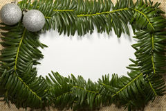 Christmas sketch with frame of realistic spruce branches. Close up Stock Image