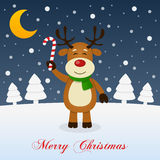 And So This Is Christmas - Smiling Reindeer. A merry Christmas greeting card with the trees, the moon and a happy reindeer smiling and holding a candy cane in a Stock Images