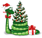 Christmas snake. Cute snake (symbol of 2013 year) in Santa's hat with Christmas tree and gift Royalty Free Stock Photo