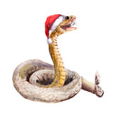 Christmas snake in red santa`s hat. Watercolor animal. Cute new year snake in red santa`s hat. Watercolor christmas animal royalty free stock photography