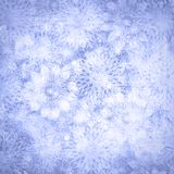 Christmas snow background Royalty Free Stock Image