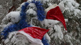 Christmas snow-covered branches in a forest where there are caps of Santa Claus and Christmas tree decorations stock footage