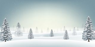 Christmas snow field with tree background. A christmas snow field with tree background Stock Photography