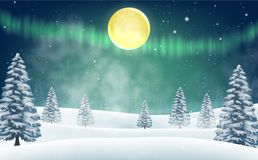 Christmas snow field with tree background stock footage