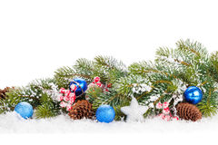 Christmas snow fir tree branch with holly berry and decor Royalty Free Stock Images