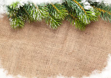 Christmas snow fir tree over burlap texture. Top view with copy space Stock Photo
