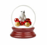 Christmas snow globe in white background. Royalty Free Stock Photography