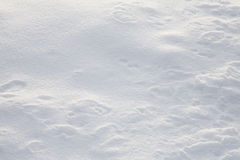 Christmas snow pattern Stock Images