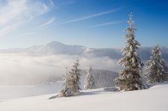 Christmas snow white landscape in the mountains stock photo