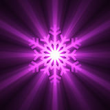Christmas snowflake purple light flare Stock Photos