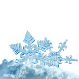 Christmas snowflakes stock photography