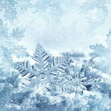 Christmas snowflakes in frame Royalty Free Stock Photo