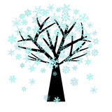 Christmas Snowflakes on Tree in Winter Royalty Free Stock Photography