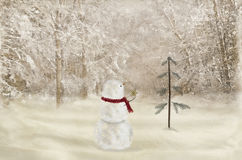 Christmas snowman with gold star Stock Photo