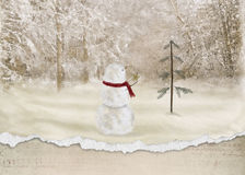 Christmas snowman with star Stock Photos
