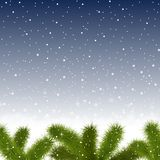 Christmas snowy background with fir branches Royalty Free Stock Image