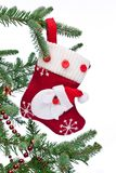 Christmas sock with Santa Claus on on fir branch. Royalty Free Stock Images