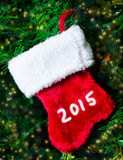Christmas sock on the tree Royalty Free Stock Image