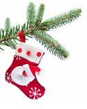 Christmas Sock With Santa Claus On On Fir Branch. Stock Image