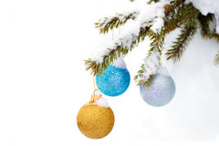 Christmas sparkle baubles on a pine branch in a snowy forest Royalty Free Stock Images