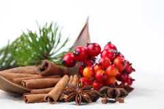 Christmas spices Royalty Free Stock Image