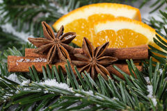 Christmas spices Royalty Free Stock Photo