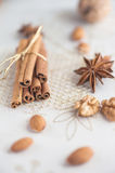 Christmas spices and nus Royalty Free Stock Photo