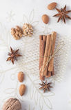 Christmas spices and nus Royalty Free Stock Image