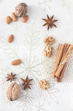 Christmas spices and nus Royalty Free Stock Photography