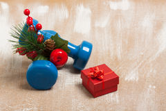 Christmas sport composition with dumbbells, red gift box, berrie. Christmas sport composition with dumbbells, red gift box, red berries, green spruce on plywood royalty free stock image