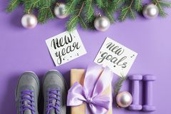Christmas sport composition dumbbells sneakers branches concept stock photo