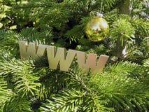 Christmas  Spruce Royalty Free Stock Photos
