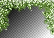 Christmas Spruce Border. Christmas vector spruce border. Snowy branches of fir tree Stock Images