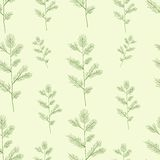 Christmas spruce branch seamless pattern. Hand Royalty Free Stock Photos