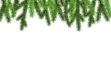 Christmas spruce branch on white background. Spruce branch on white background. Green fir. Realistic Christmas tree. Vector illustration for Xmas  and New year Stock Photo