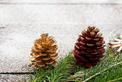 Christmas spruce branches Stock Photo