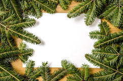 Christmas spruce frame Royalty Free Stock Photos