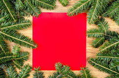 Christmas spruce frame Stock Photography