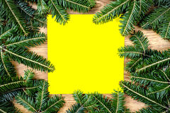 Christmas spruce frame Royalty Free Stock Images
