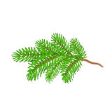 Christmas spruce twig vector Stock Images